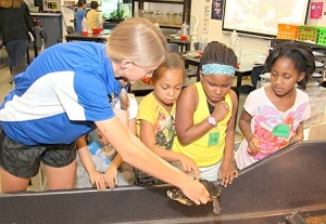Geosciences students learn presentation skills as they host groups of second-graders throughout the school year. These girls debated whether to touch a large turtle.