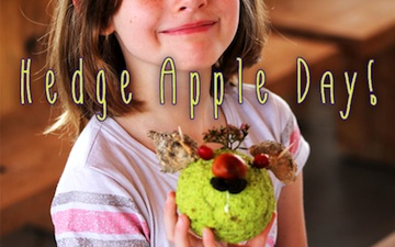 hedge-apple-day